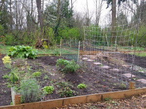 After, with trellises
